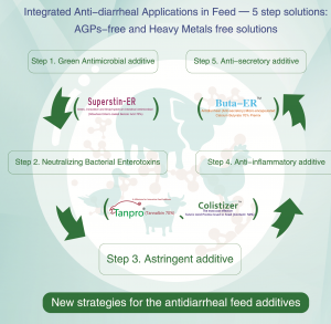 5 Antidiarrheal Steps by Insigther