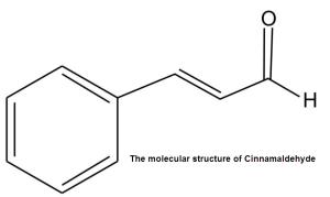 The molecular structure of Cinnamaldehyde